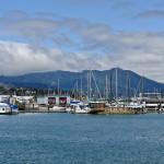 Harbor Mountains