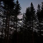 Moon Peek