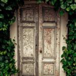 Vined Entrance